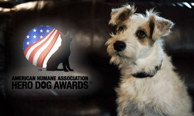 AHA Hero Dog Awards on Hallmark Channel Header