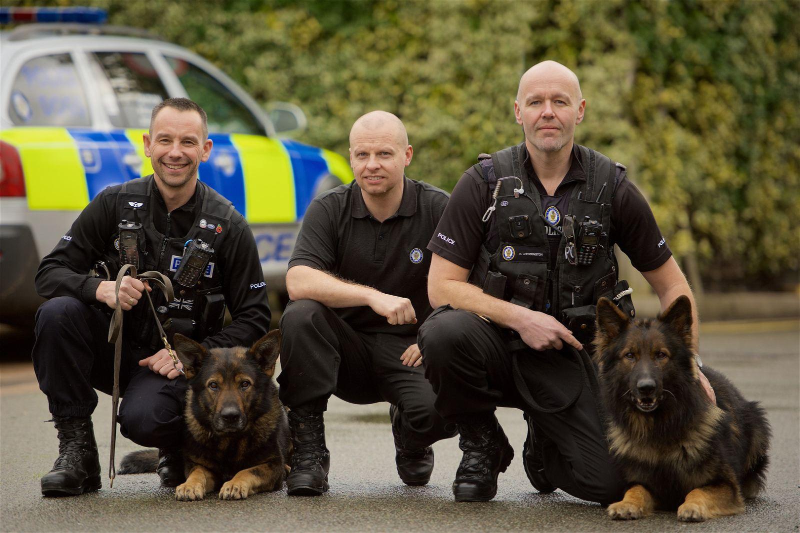 National service dog awards(1)