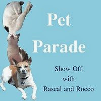 Rascal and Rocco Blog Hop Pet Parade Button