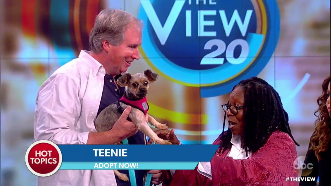 Bill Smith from BARC Shelter showing Whoopie Goldberg an adoptable dog; Teenie.