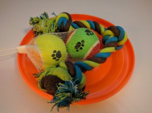 Assortment of classic dog toys