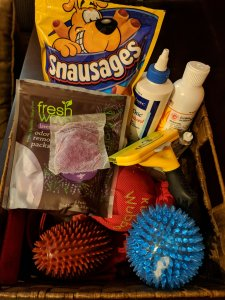 Fresh Wave Lavender Odor Removing Packs in a basket with an assortment of essential dog supplies